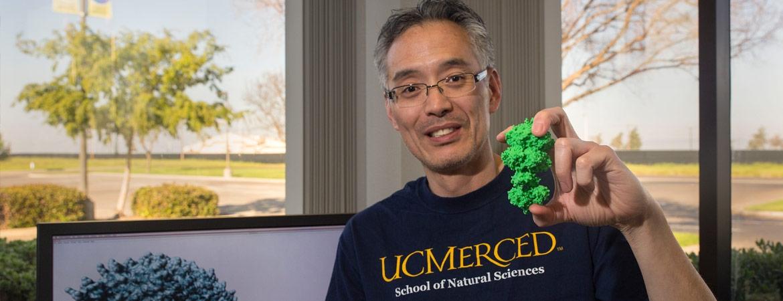 Prof. Andy LiWang